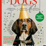 Tödliche Erkankung bei Hunden: Schnelle Atmung, Würgen und geschwollener Bauch: Symptome einer gefährlichen Magendrehung