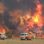 News von heute: Tausende Reservisten unterstützen Feuerwehr in Australien
