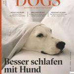 Tierliebe: Mit dem Hund im Bett schlafen? Unbedingt! Es gibt jede Menge Gründe, die dafür sprechen