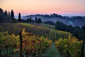 Warum sollten Sie eine Immobilien in der Toskana kaufen?